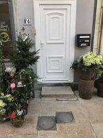 Porte entrée PVC Bombay | Agence Brie-Comte-Robert